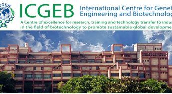 ICGEB Arturo Falaschi PhD and Postdoctoral Fellowships for Member Countries, 2018