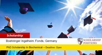 BIF Travel Grants for European or Non-EuropeanCitizens in Germany, 2019