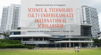 Science & Technology (S& T) Undergraduate International Scholarship at National University of Singapore, 2020