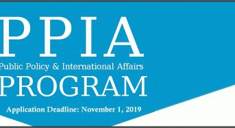 The PPIA Junior Summer Institute (JSI) Fellowship Program in USA, 2020