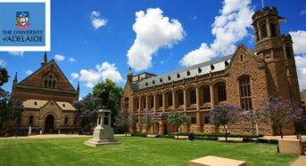 Master of Philosophy international awards at University of Adelaide in Australia, 2020